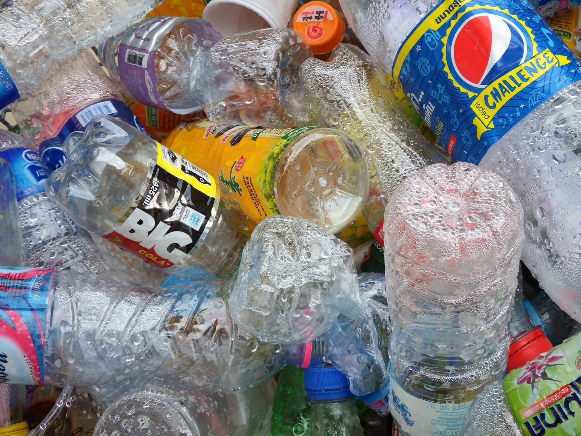 High-profile Galwegians to go plastic-free for a whole week