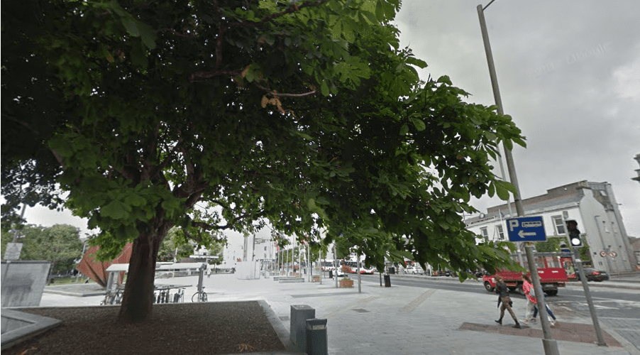 Galway Environmental Network asks locals to get involved in city planning